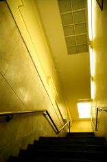 Architecture - Dark Yellow Hall 1