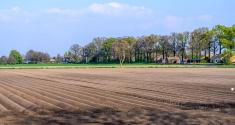 Empty farmland