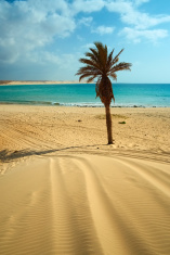 Beach Of Boa Vista, Cape Verde