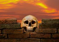 skull behind  brick wall