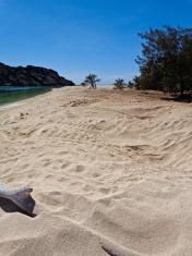Remote Tropical Island Landscape