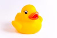 Sweet little yellow baby rubber duck