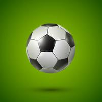 Soccer ball on green