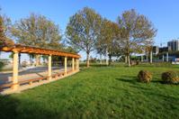 wooden corridor architecture landscape in a park