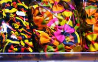 bright multicolored pasta