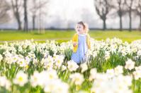 Beautiful toddler girl playing in field of yellow daffodil flowe