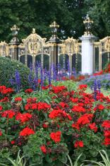 St. James's Park, London