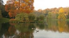 lake scene in Autumn