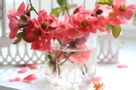 Spring bouquet from branches with pink colours