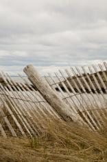 Broken Dune Fence 3