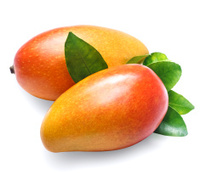 Mango on white background. Organic food.