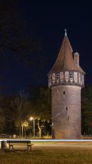 Medieval watchtower (old castle)