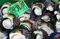 Great Green Turbans at Seafood Market