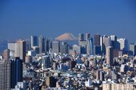 Skyscrapers in Shinjuku and Mt. Fuji