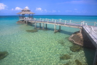 Bridge on clean beach.