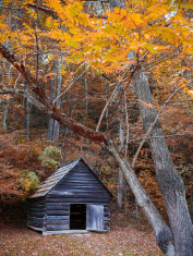 Old fashioned colonial house in autumn forest