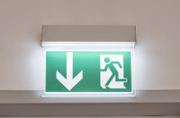 Notausgang Emergency Exit Sign