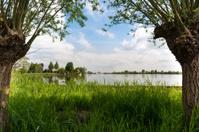 See Through Reeuwijkse Plassen