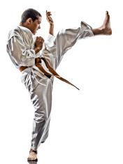 karate teenagers kid