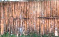 Wood fence grunge background