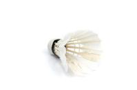 Badminton white