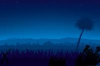 Nightly landscape