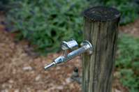 Park water tap