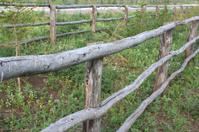 Village cattle-pen
