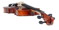 pegbox of classical wooden violin close up
