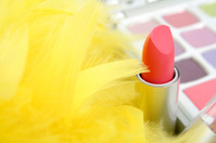 Eyeshadows, feathers and  lipstick