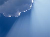 Sunbeam (image size XXL)