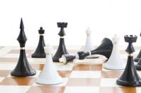 checkmate white defeats black quinn