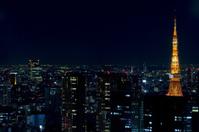 Tokyo Tower Nightscape