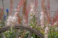 Garden Wagon Wheel