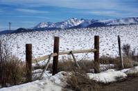 Fence in Snowy Landscape