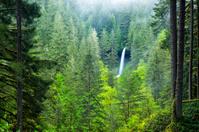 North Falls in the mist
