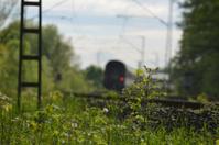 Shrup at the tracks