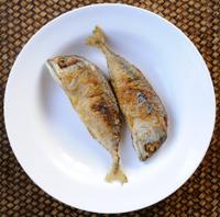 Mackerel fried on white plate