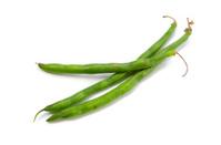 Garden Bean