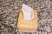 tissue paper inside the box