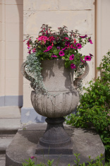 Amphora with flowers in a park.