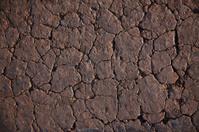 cracked soil background