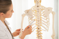 Doctor woman pointing on spine of human skeleton. Closeup