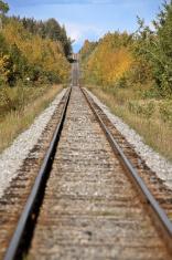 Railroad Tracks during an Alberta autumn