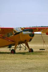 plane yellow