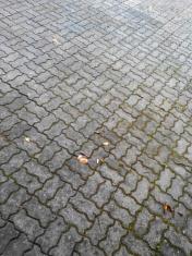 Block floor Texture