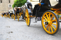 Line of carriages waiting for tourists in Sevilla