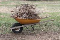 Wheelbarrow of Sticks