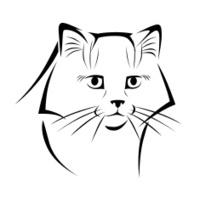 stylized cat 3