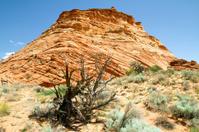 Coyotte Buttes South Utah